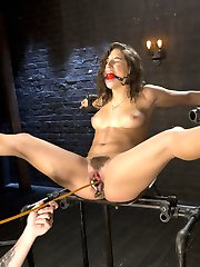 Abella has proven to be one of the most masochistic girls we shoot. She is willing to endure...