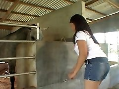 Railing Asian boner in the stables