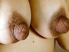 Huge Nipples on Great Tits