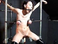 Tit restraint and smash machine