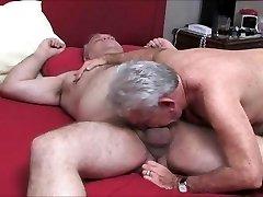 Bear pounding 2