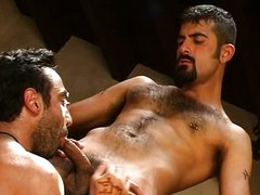 Orient Sex Trailer