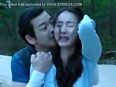 Korean Intercourse Scene 22