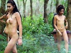 Thai Jungle Ladyboys