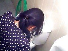korean wc spy 31