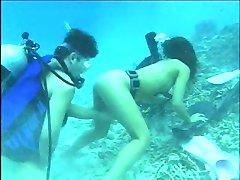 Underwater Heaven 3 by Sonny