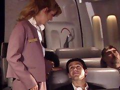 ljubav stjuardesa