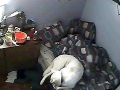 Amateur Hidden Webcam 4