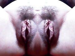 canavar vajina: büyük çift tüylü kedi ve inanılmaz canavarca labia