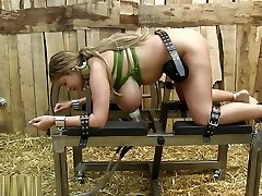 hucows Nineteen.11.30 katie milked and vibrated