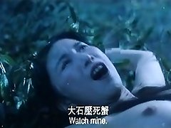 Funny Chinese Pornography L7