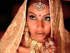 indian actress bipasha basu displaying knocker: