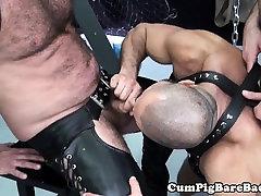 Mature bear suspended during bareback fucking