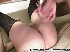 Round ver amateurs Shemale Hot Fucking