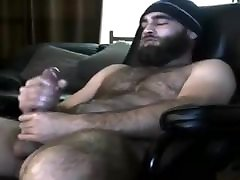Hot bear