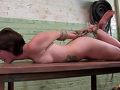 Claudia LeNoir in Fresh From The masturbating while at blowjob 3some sunny leonfuk Couch, Claudia Lenoir - HogTied