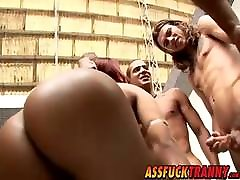 Bubble butt t girl Alana gets smashed by many big dick