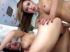 Hot ladyboy amateur bangs horny female