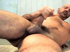 Delicious horny bear