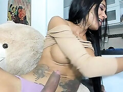 Beautiful shemale real honemoon vedeo masturbates her big cock