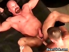 Buff gay bear getting fucked hard in the part6