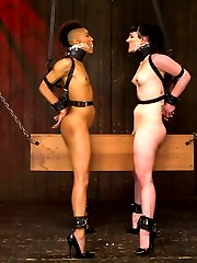Nikki and Katharine are two of our toughest models and their live show was a solid example of what these bitches can take. In scene one they are bound in identical rigs and both get to face one another riding the wooden pony. Nipple torment, tickling of the feet, and single tail are all on the menu. Their gags are the panties from the other girl and these helpless bitches are worked up into a frenzy until they are finally fully suspended by the board nestled hard in their crotches!Second, both girls give us their best spreads, face up and face down. Nikki is on top and Katharine\'s face is right at pussy height. Katharine\'s whole objective is to be a good cunt licker and get discerning Nikki off. The bitches are tormented with canes and rubber bands and Katharine is given an intense breath play predicament and pussy hook. Both are made to only cum at the same time. The pressure is on for each cunt to be a good fucked whore.Finally we revive a DeviceBondage classic position - the double sybian. Both Katharine and Nikki are bound for an intense joy ride and neck play predicament they will not soon forget. Both Mz Berlin and Claire Adams work the girls over with pain and pleasure. This is Nikki\'s first time on a sybian and we get to observe what her surprise and awe is over the intense vibration. Keeping up score, the sybian adventure does not end until both girls have cum the same amount. The other has to keep riding in torment!