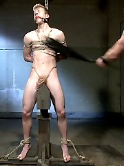 House dom Adam Herst awaits on his throne as slave 860 crawls towards him. Mr Herst inspects the...