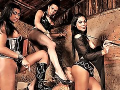 3 kinky tranny dommes punish a guy