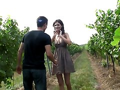The vineyard is a quiet and secluded spot for these two lovers. Hidden by the grape plants, they...
