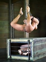 Penny Barber is known in the bondage porn world for being a bit of a brat. Back converse and sass are all she knows. She is the kind of dame that knows she can take more penalty than most people are ready to give out. That is why we keep so many people on hand for these live feeds, and why we get input from the membership. With the most twisted minds here, she doesn't stand a chance.