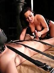 Sandra's verbal humiliation is first rate, and today she has 'lefty' eating out of her hand and begging for more. Mistress Sandra's tight latex, tall boots and bitchy demeanor accent lefty's painful screams as he is fucked in the ass with a dick on a stick.  As usual his hard cock gets him in more trouble, and he is soon in a predicament that has his balls tied tightly to a weighted line.  The more weight he takes, the closer Mistress's mouth and delicious pussy get to his straining cock.