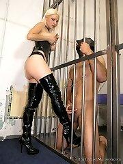 Teasing The Prisoner