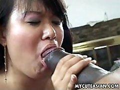 Nero tizio ha un hot Asian pulcino a devastare