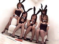 Japán Nyuszi Orgia (Cenzúrázatlan JAV)