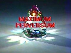 Maximum Perversum 05 - Sex-Hammer
