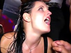 Hottest real amateur party with sluts getting fucked