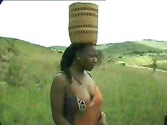 Afrikanische fick-safari für weiße männliche