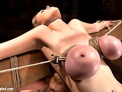 Darling, Katie Kox, and their amazing huge tits are back at Hogtied.  If you have ever wondered why Hogtied is the biggest, best bondage site, on the net,  wonder no more, this is something you don't see every day.