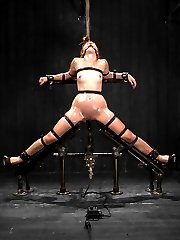 In the first position, Jodi is shaped into an intense kneeling strappado with metal. Her ass is...
