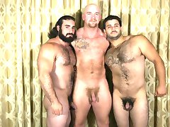 muscle bear daddies