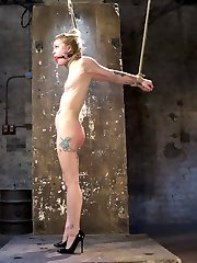 The stunning petite blonde Anna Tyler, dressed in little black dress and high heels is ready to surrender to her rope bondage desires. Bound and gagged, she struggles to hold back squirting orgasms as a sadistic hitachi is pushed into her tight dripping wet tiny pussy. Fully suspended, rope slicing her slit open, she screams to suffer for corporal punishment. Clothespins stinging her nipples and pinching her tongue, she is unable to resist the brutal pleasure. Finally a dick on a stick is thrust down her throat and opens up her pussy for more orgasms.