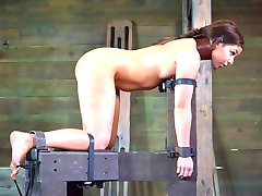 First comes the set up. Sex is always hotter with a healthy dose of hard bondage. She is...