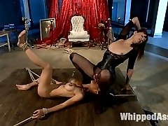 Maitresse Madeline and Tia Ling reunite after three years for another explosive LIVE Whipped Ass update! Tia was Madeline\'s second shoot ever at Kink which gives Madeline a soft spot for Tia. However, she\'s anything but soft when it comes to dominating her. If you missed this show LIVE here\'s your chance to see all the action packed footage edited to all the best parts! Tia and Madeline\'s connection jumps from the screen and Tia remains one of the toughest subs to walk through the door of The Armory. An update not to be missed! Included are suspension bondage, squirting, fisting, ass licking, brutal clamps, whipping, spanking, candle wax, humiliation and strap-on ass fucking!