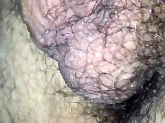 Hard cock young bear close up