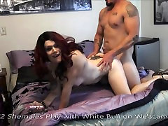2 Shemales Play with White Bull