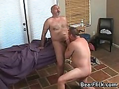 Big hairy asses gay bears sucking cock gays