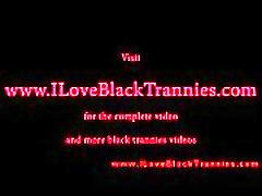 Black tranny shemale interracial sucking