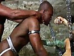 Gay ebony jocks love anal in their orgy in the dungeon