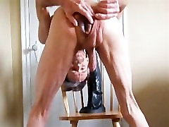 Ass Fucked By a Stallion Horse Penis and More