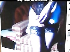 Webcam Shemale - 8.15 shemale porn shemales tranny porn trannies ladyboy la